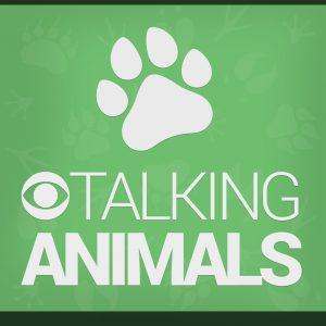 Talking-Animals_v08